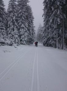 Niederschlag(end)